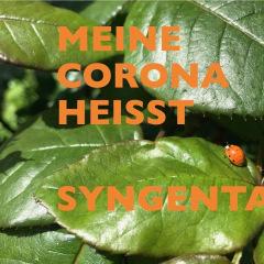 Syngenta-.001