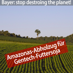 protestbild-block-bayer-1