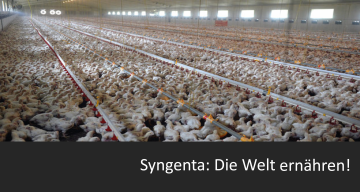 Syngenta-Welternährung